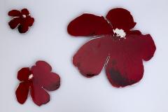 Ranunculaceae acris III. Största  blomman  40 x 45 cm.